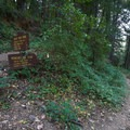 A sign marks where the trail to Illinois Crossing leaves the South Yuba National Trail and begins a quick descent to the camping area and river.- Illinois Crossing Trail + Primitive Camp