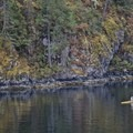 An early morning rower takes advantage of smooth waters. - Paddle to Twin Islands Campsite