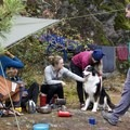 Busy campsite on shore. - Paddle to Twin Islands Campsite
