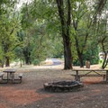 Three group camping areas are located near each other beside A Loop.- Valley of the Rogue State Park Campground