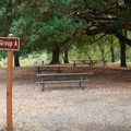 Group sites have large fire pits and several benches, and they are located beneath a shady canopy.- Valley of the Rogue State Park Campground