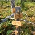 Trail junction.- Three Fingered Jack Loop