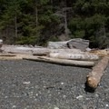 Typical log-strewn beach.- Lasqueti Islands Coast Paddle