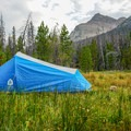 Camping in the meadows of West Fork Blacks Fork.- NW Wasatch Peak / Wasatch Benchmark
