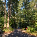 Well-organized and maintained roadways throughout the campground.- Cresap Bay Recreation Area Campground