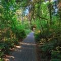 Paved walkways/bikeways throughout the campground.- Cresap Bay Recreation Area Campground