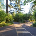 Crosswalks toward the entrance to the campground.- Cresap Bay Recreation Area Campground