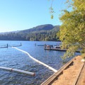 Grassy area overlooking Lake Merwin and the boat ramp docks.- Cresap Bay Recreation Area Campground