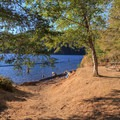 Small swimming area on the west end of the day-use area.- Cresap Bay Recreation Area Campground