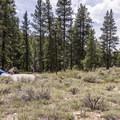 Granite Tent Campground.- Granite Tent Campground