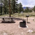 Typical campsite at Granite Campground.- Granite Tent Campground