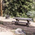 Typical campsite at North Bank Campground.- North Bank Campground