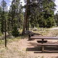 Typical One Mile campsite.- One Mile Campground