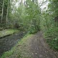 The trail follows the creek.- Teeter Creek Falls