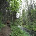 Hiking the trail to Teeter Creek Falls.- Teeter Creek Falls