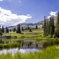 Tiny pond near site #8- Lake Irwin Campground