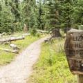 Entering Lizard Head Wilderness.- Cross Mountain Trail