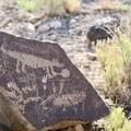One of many petroglyphs along the Mesa Point Trail.- Boca Negra Canyon: Mesa Point Trail