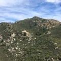 A bird soaring high above the Southern California desert.- Pacific Crest Trail: California Section B