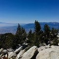 Summit of San Jacinto.- Pacific Crest Trail: California Section B