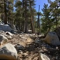 Starting the long descent from San Jacinto.- Pacific Crest Trail: California Section B