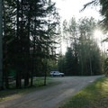 The section of campsites nearest to the lake.- Andy Bailey Regional Park Campground