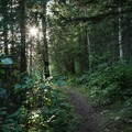 Lakeside trail.- Andy Bailey Regional Park Campground