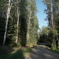 Gravel access road.- Andy Bailey Regional Park Campground