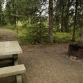 Sites have picnic tables and a fire ring.- Tetsa River Campground