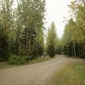 Campground access.- Tetsa River Campground