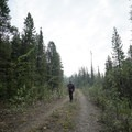 An old section of the Alaska Highway.- The Cut Trail