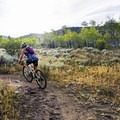 Beautiful aspen groves line the trail. - RTS Loop