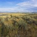 Looking southeast toward Swanner Nature Preserve. - RTS Loop