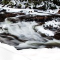 Red Creek in winter. Deep in the center of Dolly Sods Wilderness. - Bear Rocks Preserve