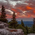 Sunset after the hike near the trailhead. - North Dolly Sods Loop from Bear Rocks Trailhead