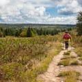 Hiking North Dolly Sods Loop via the Bear Rocks Trailhead.- North Dolly Sods Loop from Bear Rocks Trailhead