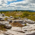 A 180-degree panorama from the top of Cabin Mountain from the south east to the southwest.- North Dolly Sods Loop from Bear Rocks Trailhead