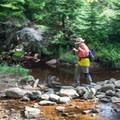 Crossing Red Creek near its headwaters. - North Dolly Sods Loop from Bear Rocks Trailhead