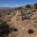 View descending the Little Purgatory Trail.- Little Purgatory Trail