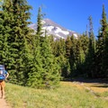 Meadows become more frequent as the Obsidian Trail nears the PCT with the Middle Sister above.- Middle Sister: West Approach
