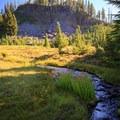 Creek crossing below Obsidian Falls.- Middle Sister: West Approach
