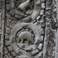 The stegosaurus of Ta Prohm.- Ta Prohm Temple