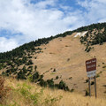 View of the M from below.- Bozeman's M Trail