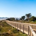 Great views of Pismo Beach from the boardwalk.- Monarch Butterfly Grove + Meadow Creek Trail