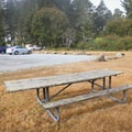 A few tables are set in the lawn around the parking lot.- Tseriadun State Recreation Area