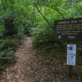 A sign marking the beginning of the Humbug Mountain Trail.- Humbug Mountain Trail