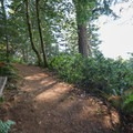 A bench along the western trail allows hikers to stop and take in the ocean views.- Humbug Mountain Trail