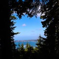 Views of the ocean from the Humbug Mountain Trail.- Humbug Mountain State Park