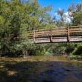 A bridge crosses the calm Brush Creek, where campers can dip their feet.- Humbug Mountain State Park