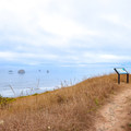 A bench atop the Fern Trail overlooks the ocean and rock stacks out on the water.- Humbug Mountain State Park
